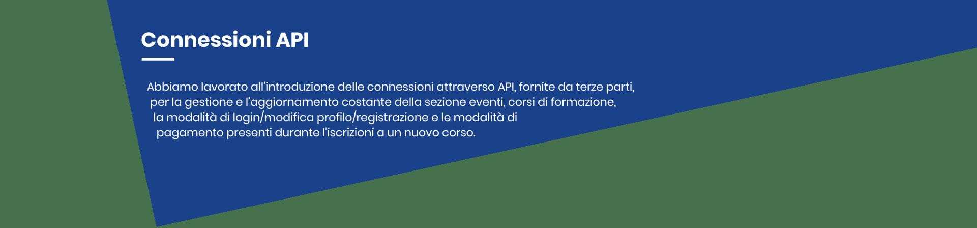 Immagine 4_Connessioni API